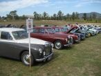 Melb Concours Line Up