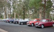 Magnette Run 2016 018 small